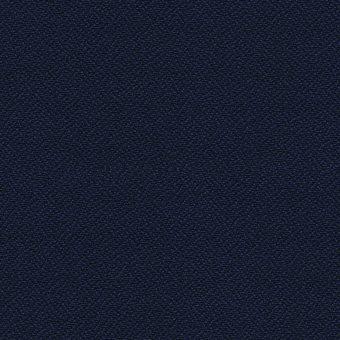 angelfish-ya316